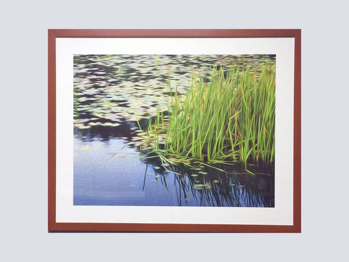 Artwork - Grassy Lake 3