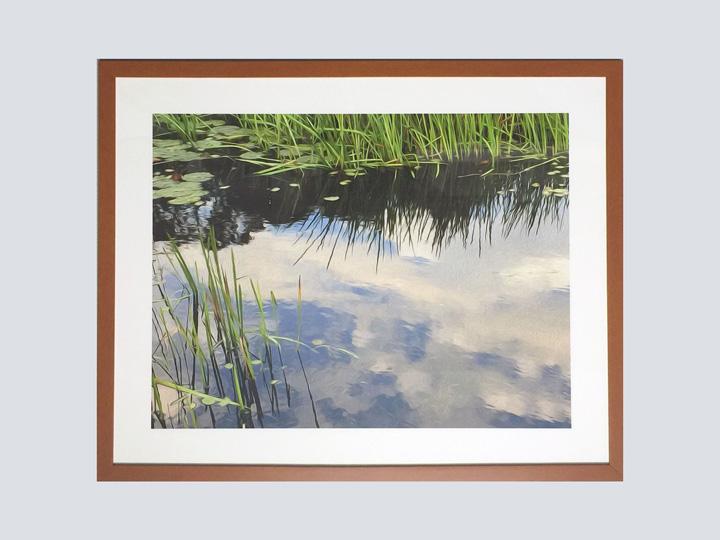 Artwork - Grassy Lake 5