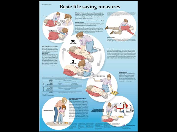 Anatomical Chart - Basic Life-Saving Measures