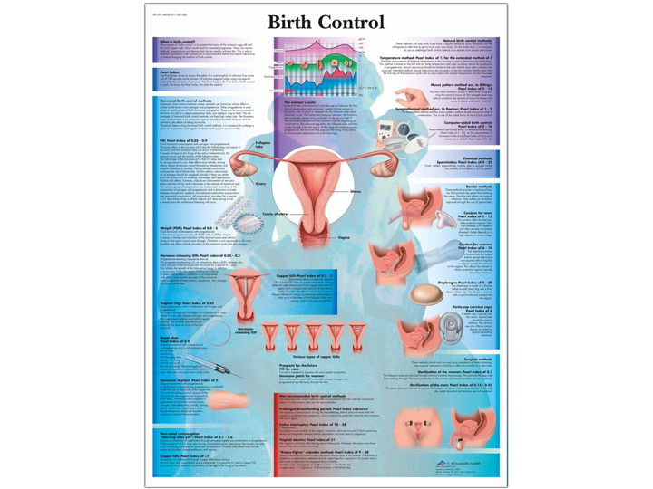 Anatomical Chart - Birth Control