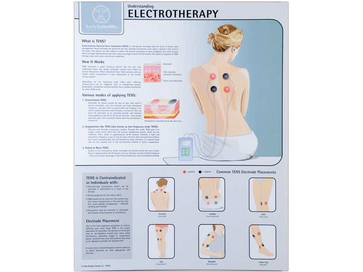 Anatomical Chart - Electrotherapy