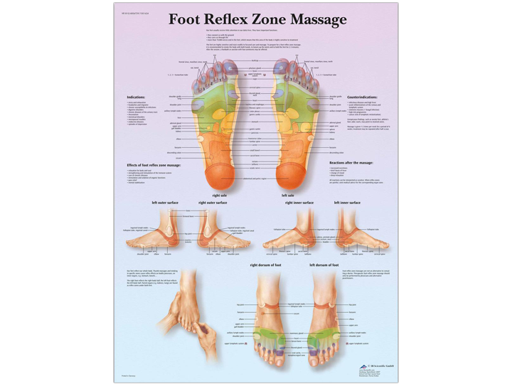 Anatomical Chart Foot Reflex Zone Massage A 1 Medical Integration